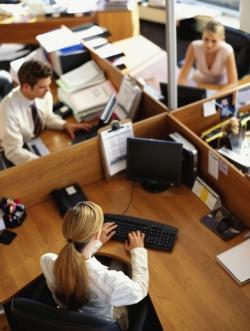 Experienta de munca pentru un viitor job featured image