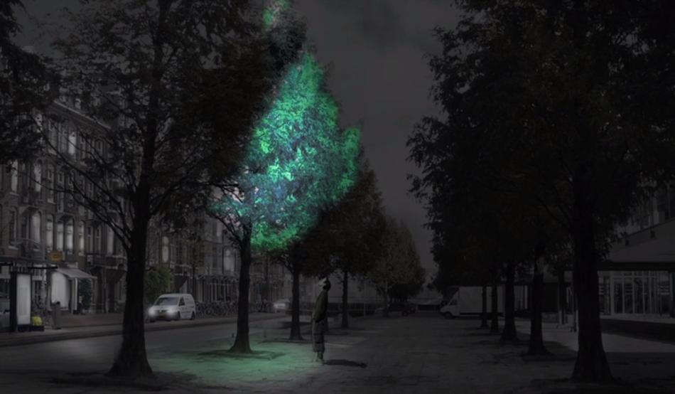Lumina artificiala ne polueaza lumea featured image