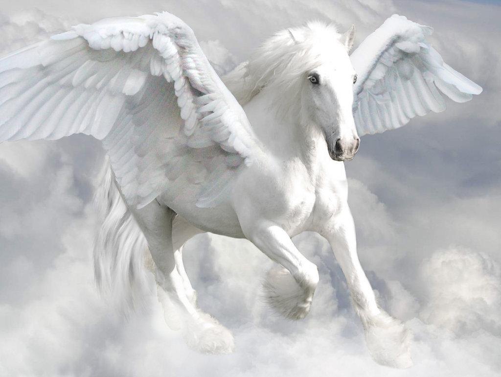 Cai renumiti din mitologie featured image